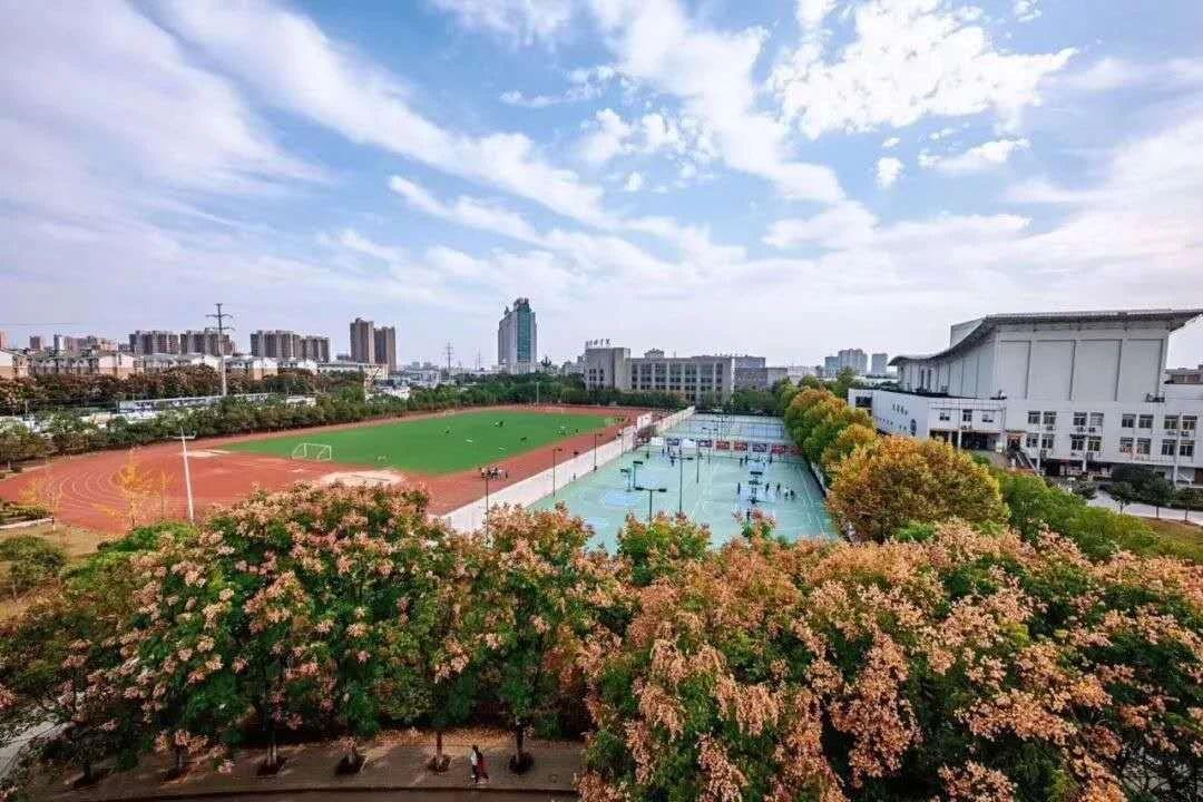武汉设计工程学院2020年各省录取分