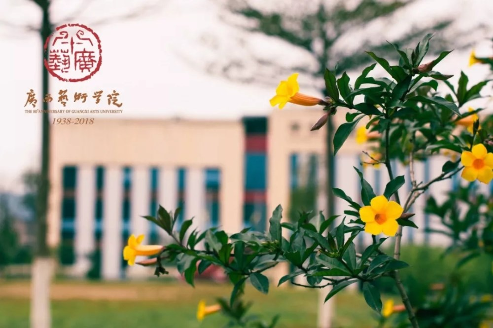 广西艺术学院关于2020年本科艺术类专业招生