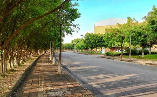 广州传媒培训艺考传媒专业培训学习参加高考的优势